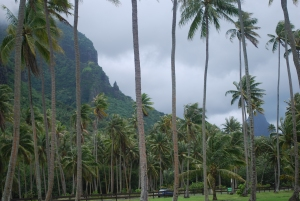 Moorea in the Society Islands of French Polynesia©Jean Janssen