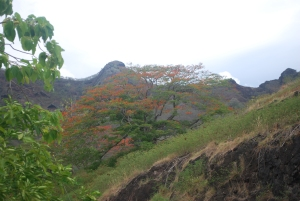 The beautiful rugged landscape of the Marquesas.  On Nuku Hiva.©Jean Janssen