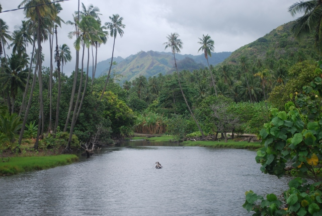 Interior of the island of Nuku Hiva, Marquesas, Islands, French Polynesia.  I loved this island.©Jean Janssen