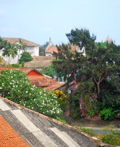 Rooftops and flowers as seen from the clock tower at the Dutch Fort in Galle, Sri Lanka. ©Jean Janssen
