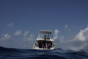 Surfacing at the dive boat. ©Bill Fuqua
