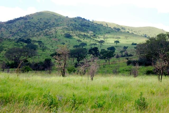 landscape near the Hluhluwe-Umfolozi Game Reserve, South Africa ©Jean Janssen