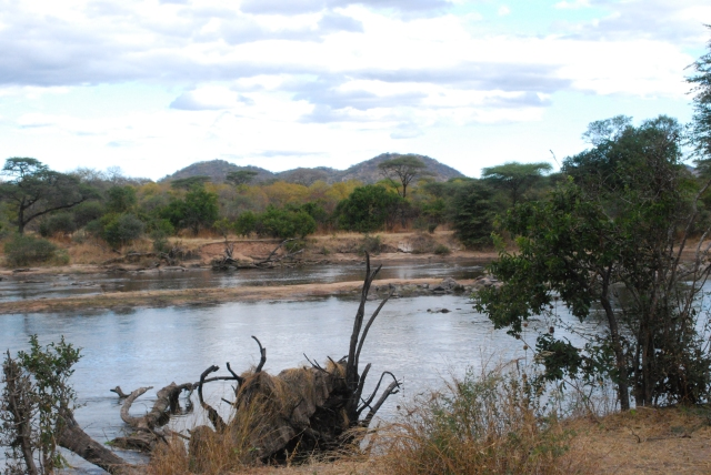 ©Jean Janssen  The Ruaha River, Tanzania