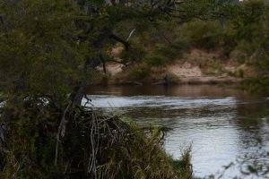©Jean Janssen Our break spot along the Ruaha River, Tanzania
