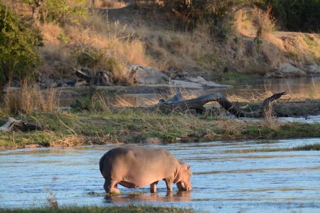 ©Jean Janssen Ruaha River, Tanzania