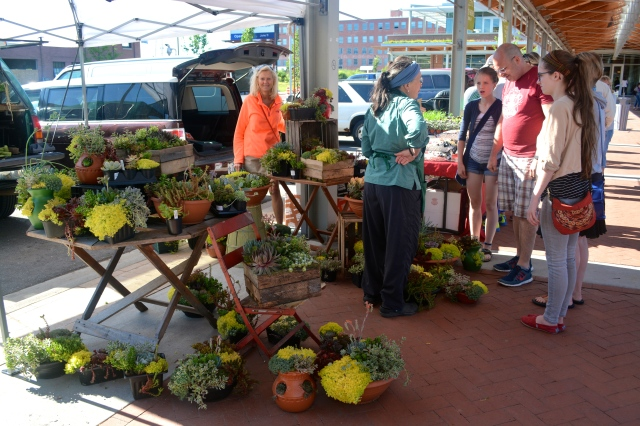 My cousin Deb (in orange) helped me pick out some beautiful succulent arrangements at the Downtown Market in GR. ©Jean Janssen