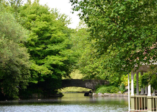 You may recognize this bridge from movies set in Dublin. It is located in St. Stephen's Green ©Jean Janssen