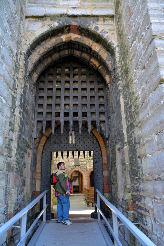 Rocky at the portcullis at Castle Rushen, Isle of Man. ©Jean Janssen