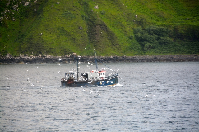 As seen from our cabin at anchor just off Stornoway, Isle of Lewis, Scotland ©Jean Janssen