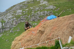 Thatched roof repair at Blackhouse Village, Isle of Lewis, Scotland ©Jean Janssen