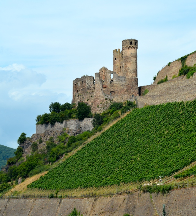 Ehrenfels Castle and more evidence of the wine region. ©Jean Janssen