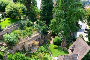 gardens viewed, looking down from the castle, Heidelberg, Germany ©Jean Janssen