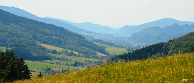 View at our lunch stop. The Black Forest, Germany ©Jean Janssen